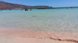CRETA CHRISSI ISLAND