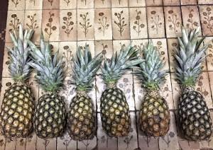 ananas Togo